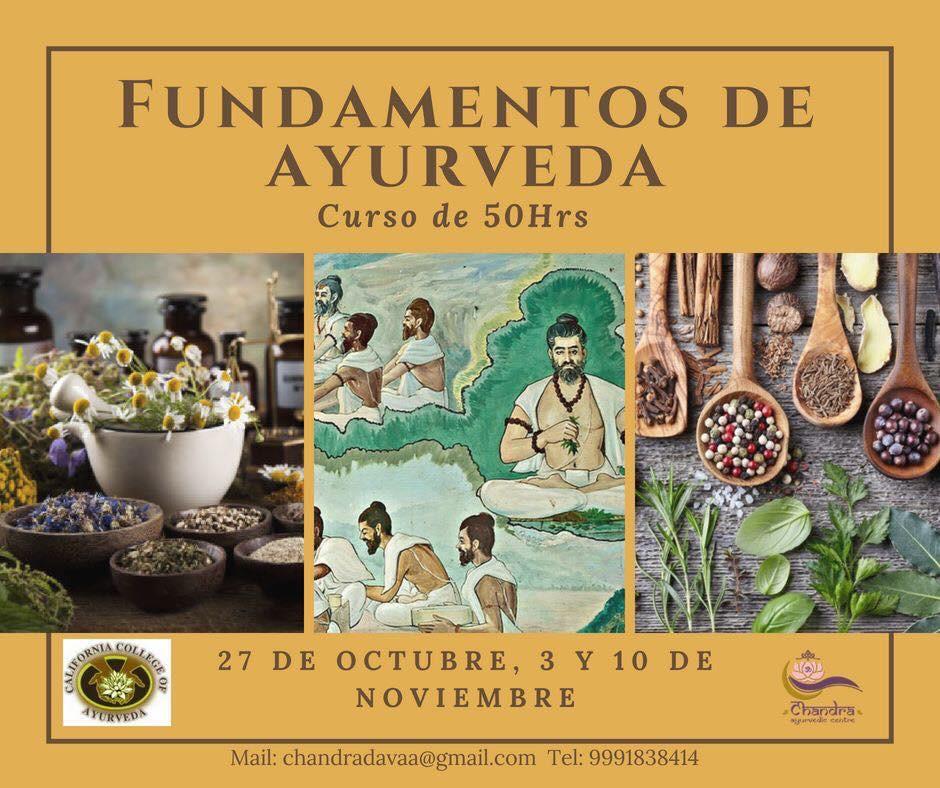 Fundamentos de Ayurveda